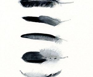 feather, black, and art image
