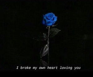 blue, blue rose, and broken image