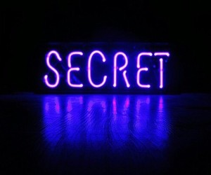 secret, neon, and purple image