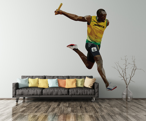 bolt, champion, and home decor image