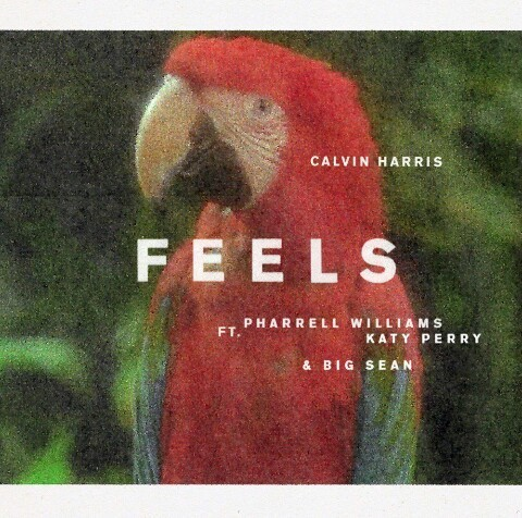 calvin harris, feels, and katy perry image