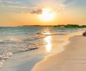 beach, sea, and beautiful image
