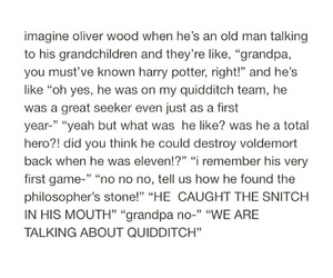 grandpa, harry potter, and quidditch image