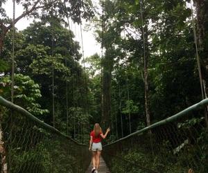 adventure, bridge, and exploring image