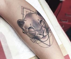 animal, cat, and geometry image