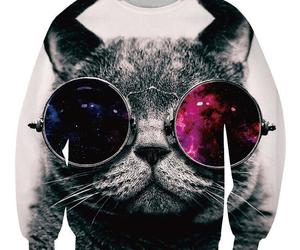 cat and sweatshirt image