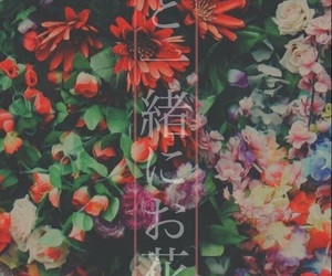 color, love, and flower image