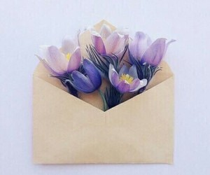 Letter, flowers, and violet image