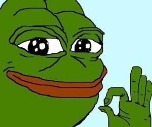 meme, frog, and pepe image