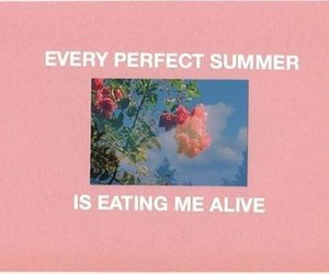 summer, aesthetic, and pink image