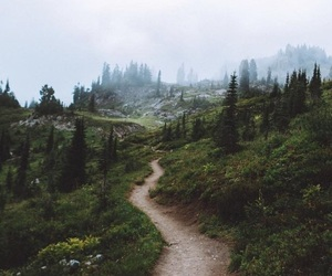 nature and path image