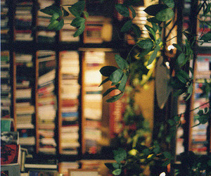 beautiful, photography, and bookstore image