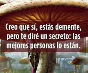 frases and sombrerero image
