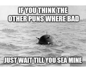 funny, puns, and lol image
