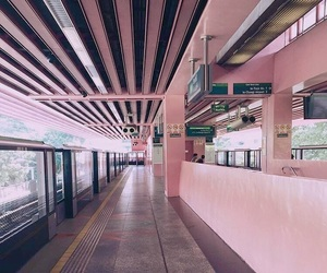 aesthetic, rose, and jisoo image