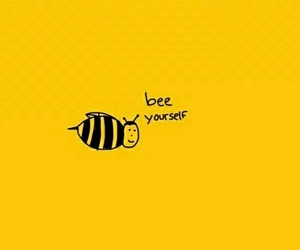 yellow, bee, and aesthetic image