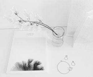 minimalism, flowers, and magazine image