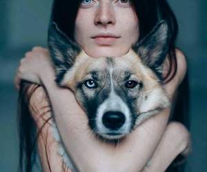 dog, eyes, and girl image