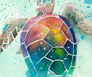 turtle and wallpaper image