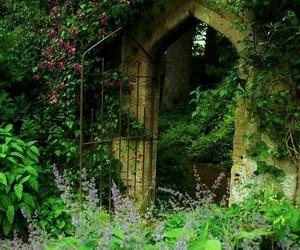 flowers, garden, and secret image