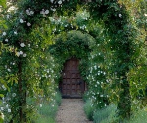 garden, door, and nature image