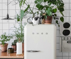 fridge, smeg, and koyzina image