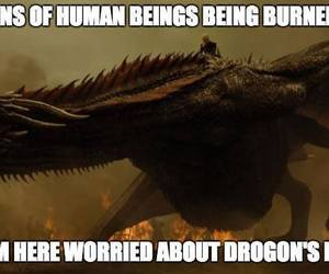 dragons, got, and game of thrones image