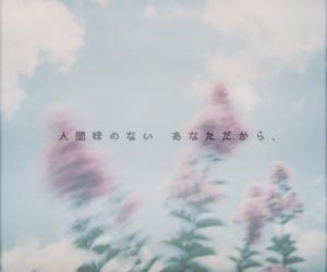 like, word, and 好き image