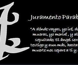 parabatai, cazadores de sombras, and juramento image