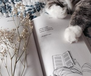 book, cat, and flowers image