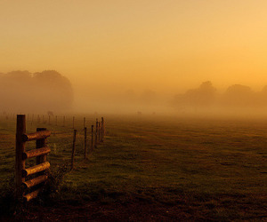 country life, countryside, and farm image