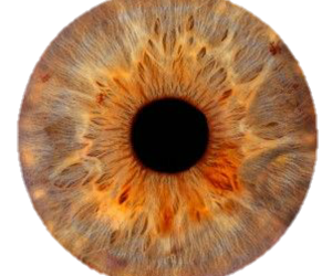 color, Crater, and eye image