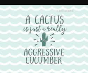 cactus, cucumber, and aggresive image