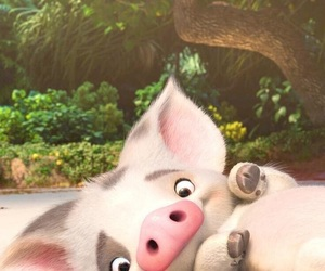 pig, moana, and disney image