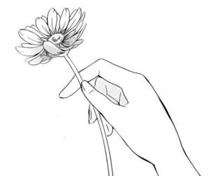 flowers, drawing, and manga image