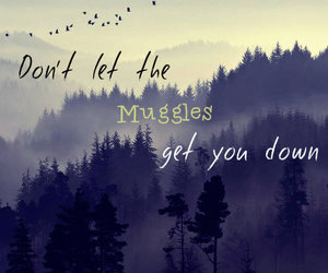 harry potter, quote, and muggles image