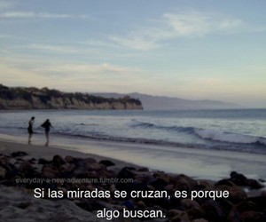 beach, couples, and palabras image