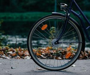 autumn, bike, and vintage image