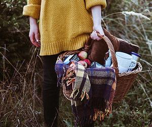 picnic, autumn, and fall image