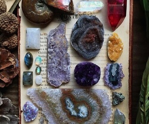 mystic, shell, and book image
