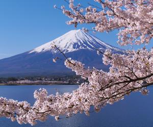 japan, mtfuji, and Nippon image