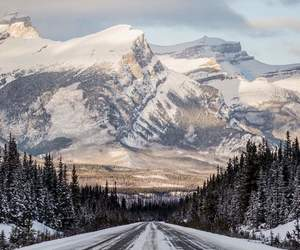 snow, travel, and road image
