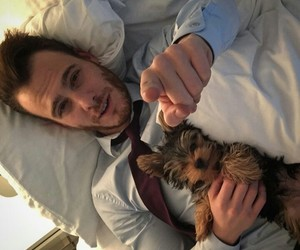 kerembursin and dogs image