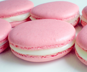 pink, sweet, and ‎macarons image