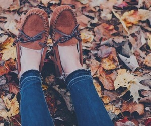 leaves, moccasins, and fall image