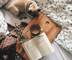 book, dog, and coffee image