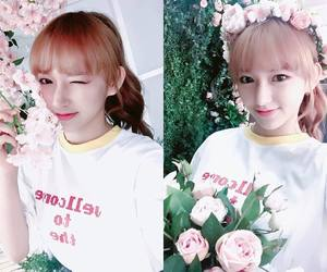 wjsn and cosmic girls image