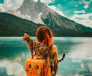 cat, girl, and adventure image