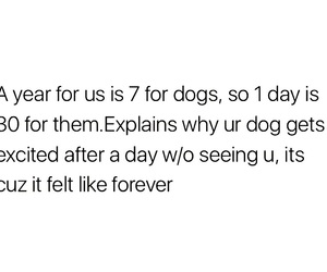 cry, dogs, and puppies image