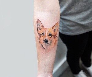 dog, inked, and tattooed image
